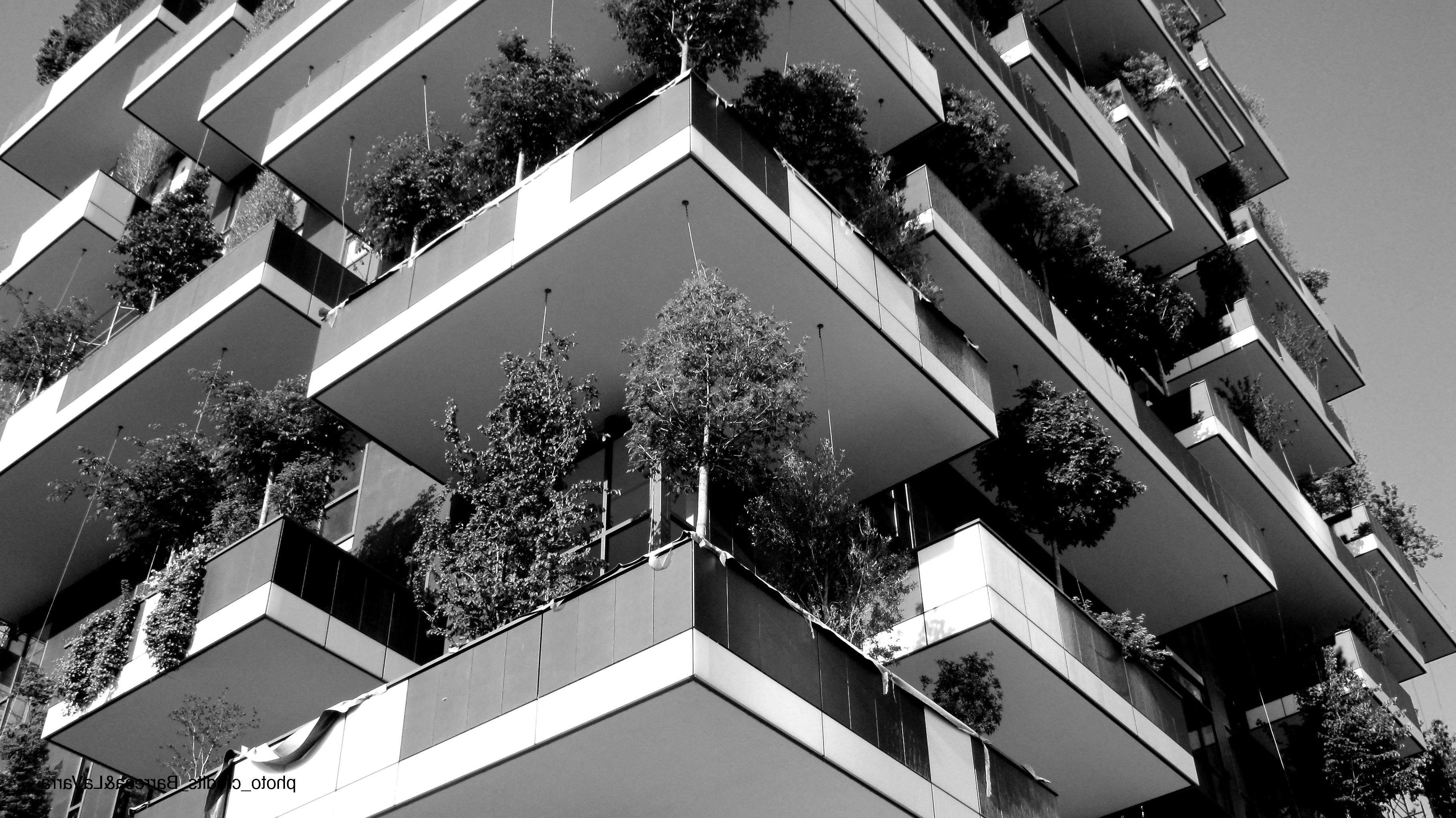 bosco-verticale.jpg